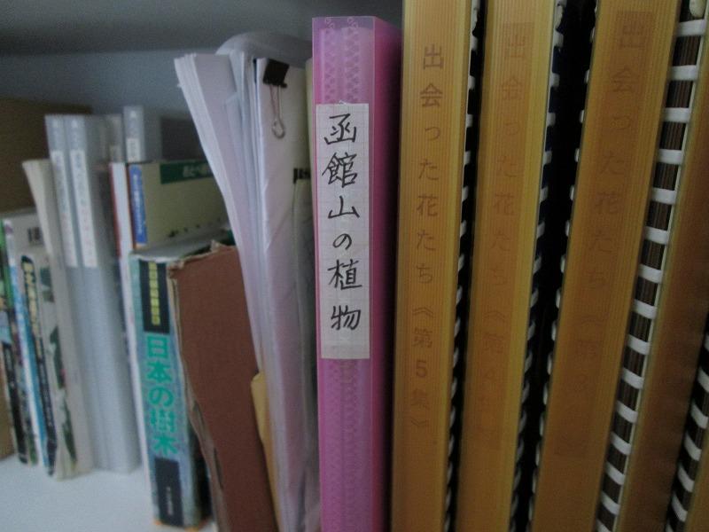 http://hakomachi.com/diary2/images/IMG_4307.JPG