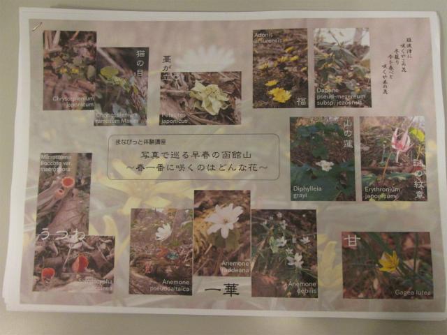 http://hakomachi.com/diary2/images/IMG_4826.jpg